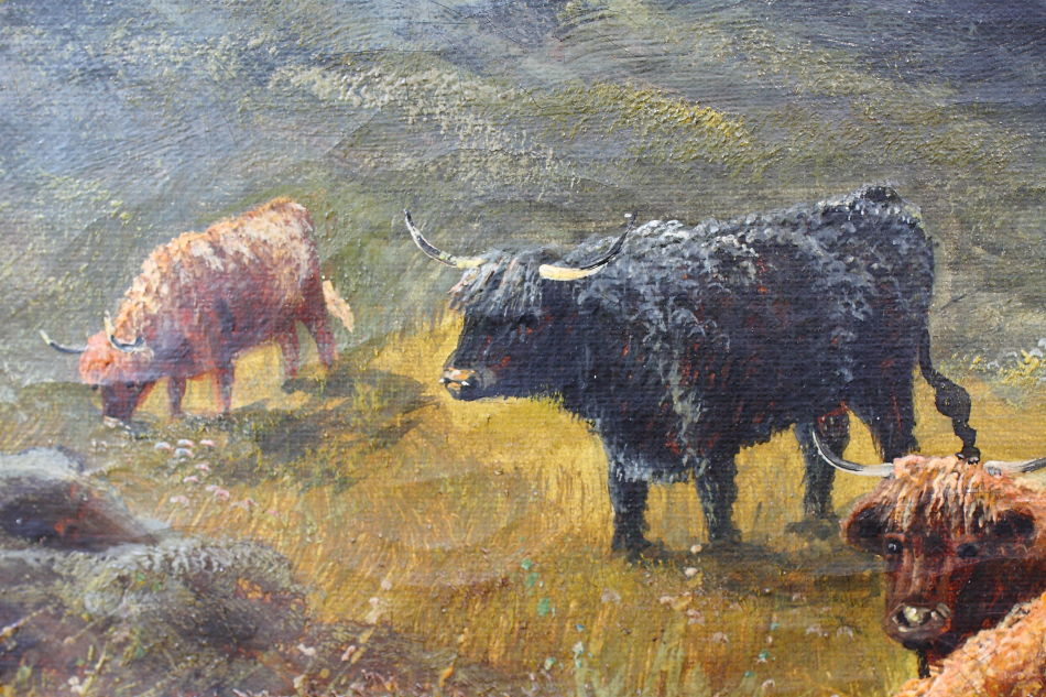 Highland Cattle / Oil Painting